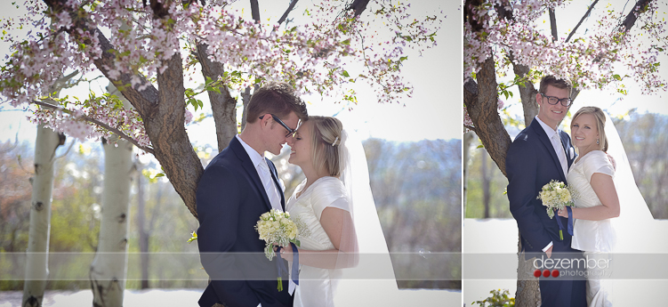 Utah-Wedding-Photographers1