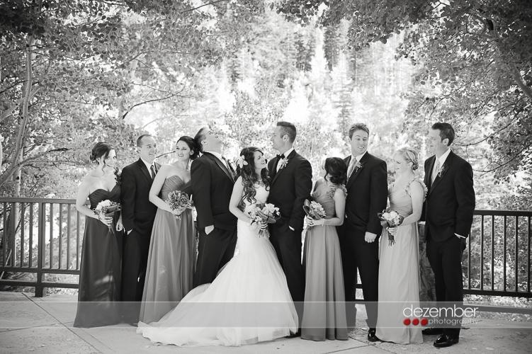 Best_Snowbird_Utah_Wedding_Photographers_Dezember_Photography_15