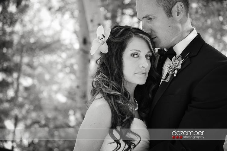 Best_Utah_Wedding_Photographers_Dezember_Photography_182