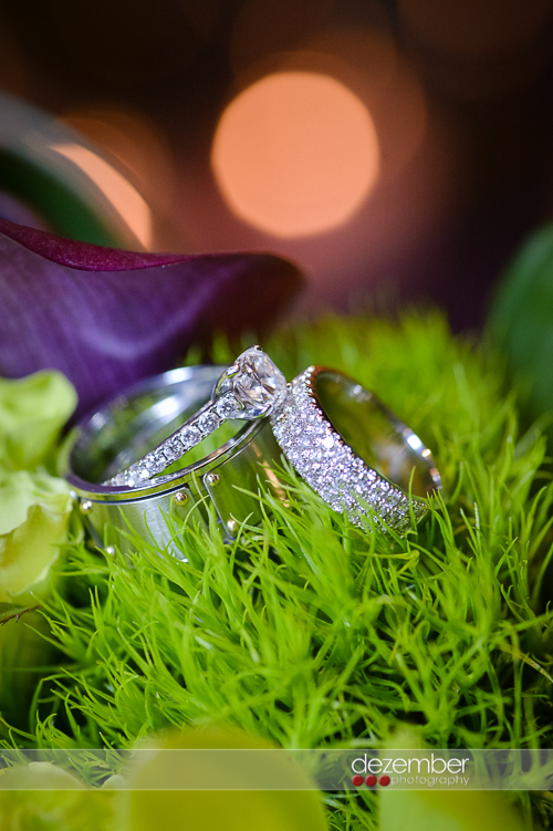Best_Utah_Wedding_Photographers_Dezember_Photography_24