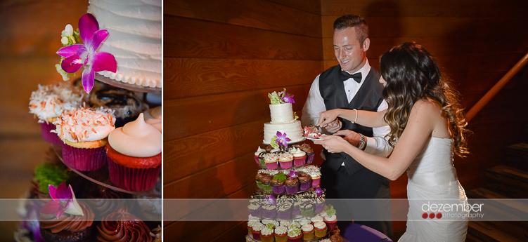 Best_Utah_Weddings_Snowbird_Dezember_Photography_31