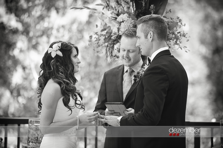 Snowbird_Weddings_Utah_Photographers_Dezember_Photography_10
