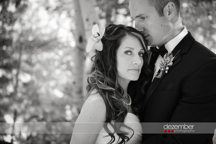Best_Utah_Wedding_Photographers_Dezember_Photography_182