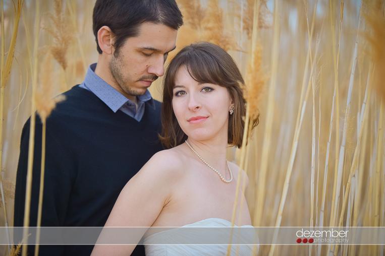 Antelope Island Weddings
