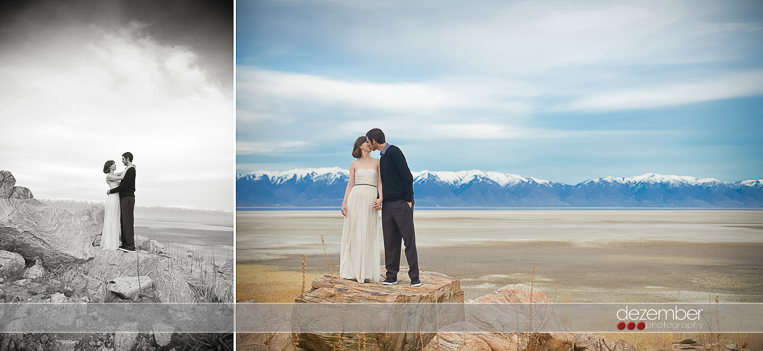 Antelope Island Wedding
