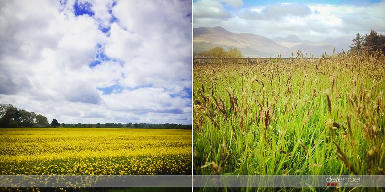 Countryside of Ireland