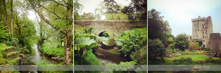 Dezember Blarney Castle Visit