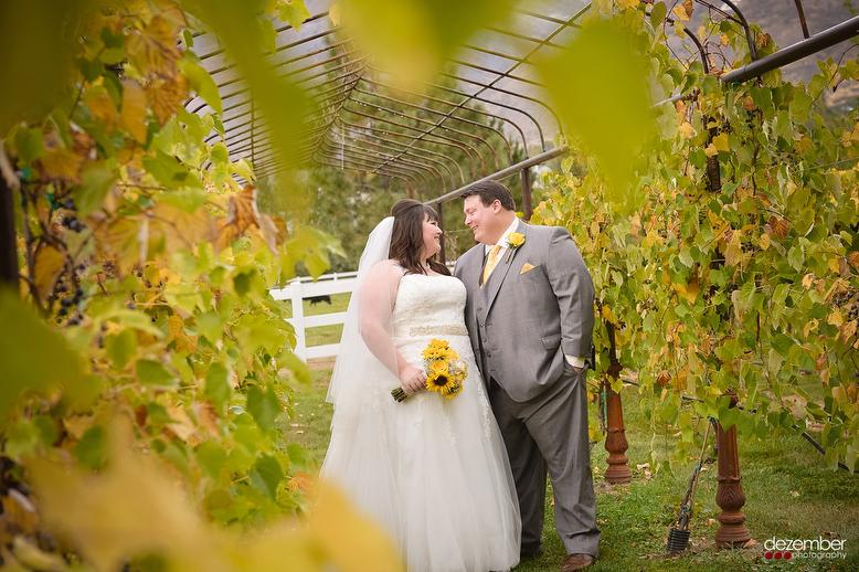 Hadley Historic Farm Wedding