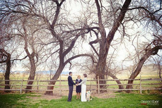 Dezember Photography Wedding Photo Trends