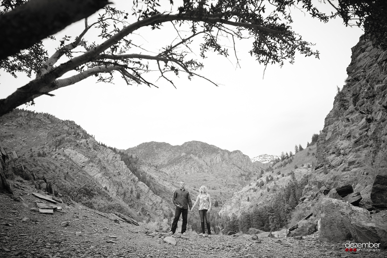 Big Cottonwood Canyon_Utah_Wedding_Photographers_Dezember