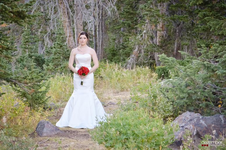 Nature_Utah_Wedding_Photographers_Dezember