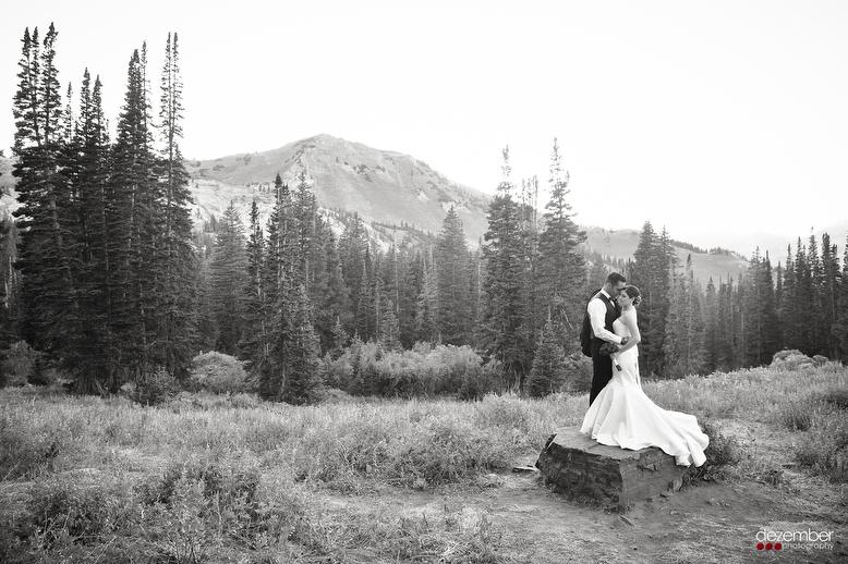 Panoramic_Utah_Wedding_Photographers_Dezember