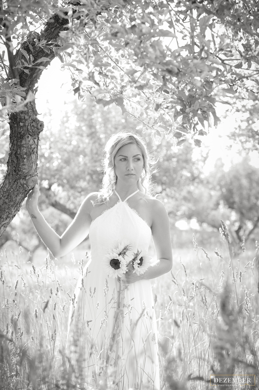 Utah Photographer | Dezember Photography