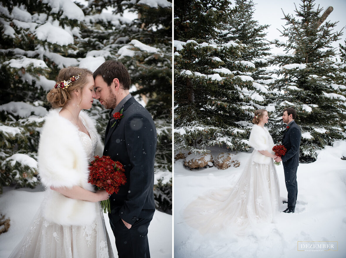 Wedding Couple formals in the snow