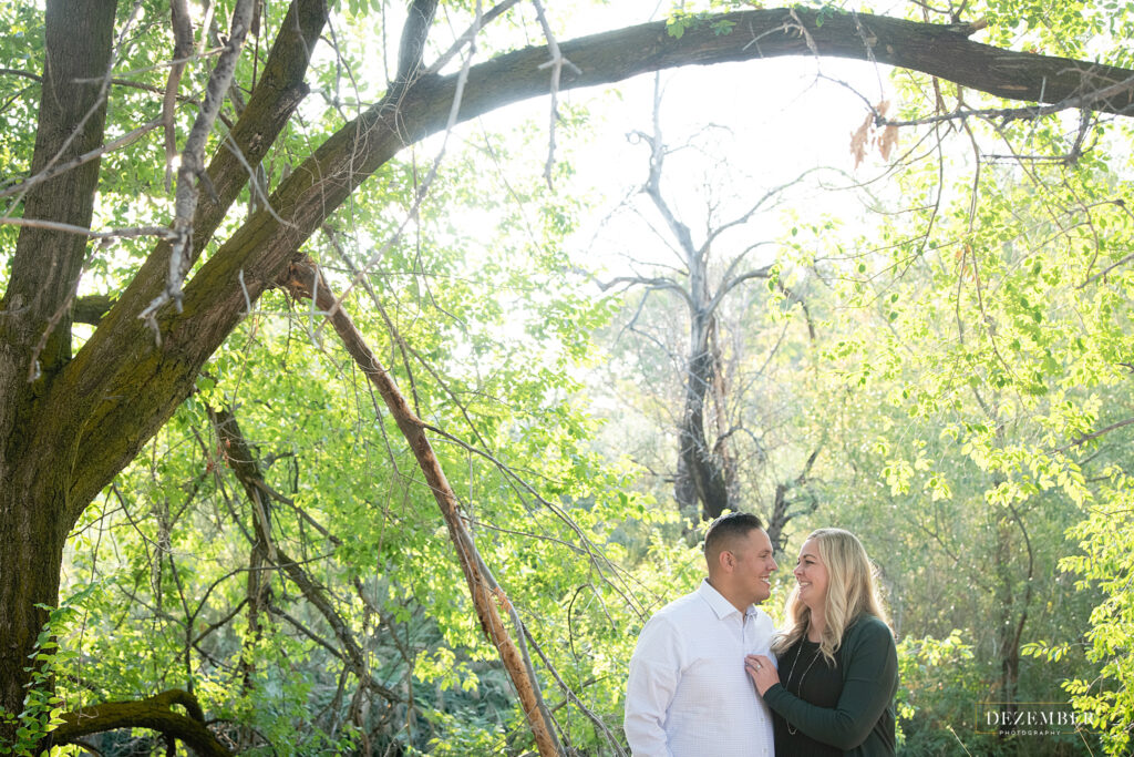 Mom and dad surrounded by green arching tree