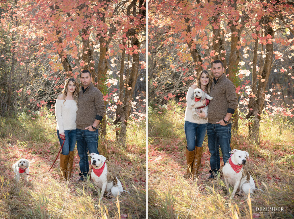 Fall engagements with the couple and their two dogs