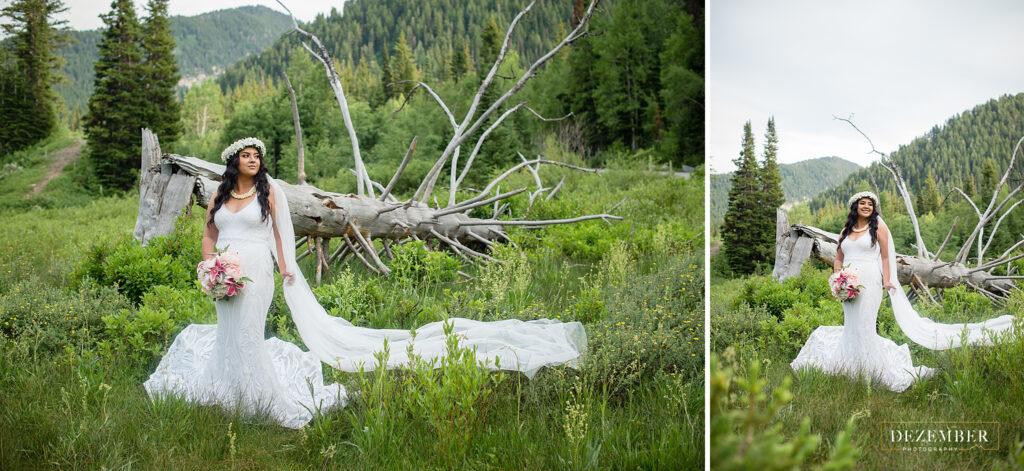 Bride in front of big fallen tree
