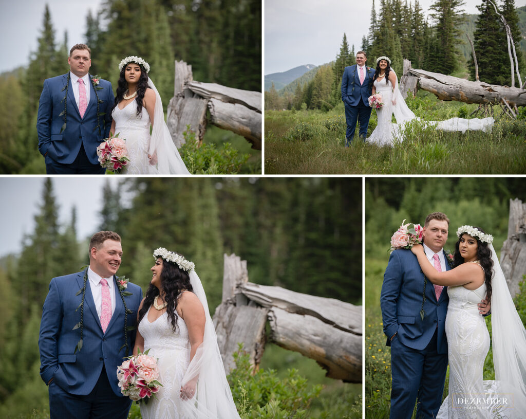 Collage of bride and groom in field
